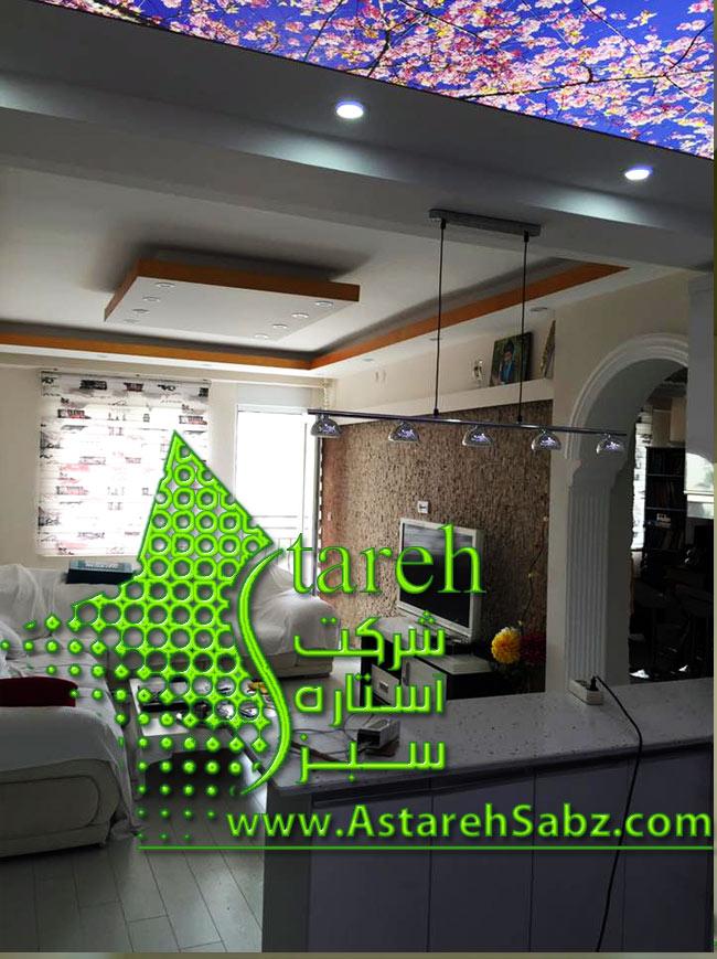 (Astareh Sabz (376